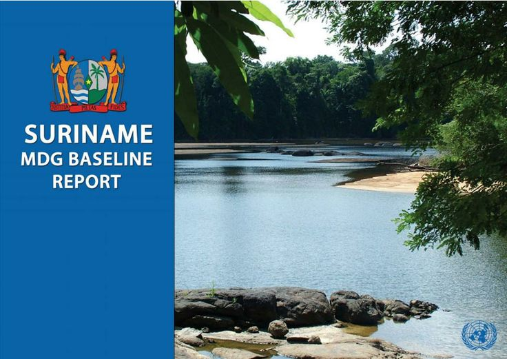 Suriname MDG Baseline Report (EBOOK) http://www.undg.org/archive_docs/6945-Suriname_MDG_Baseline_Report.pdf This report describes the process that resulted in the production of the first MDG Baseline Report for Suriname in 2004. At this stage, the dearth of data related to many of the goals has resulted in a Baseline Report rather than a full MDG Report.