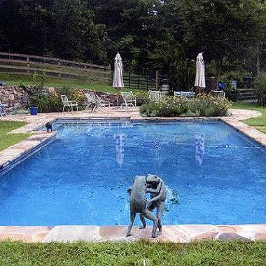 Best 25 Country Pool Ideas On Pinterest Simple Pool P