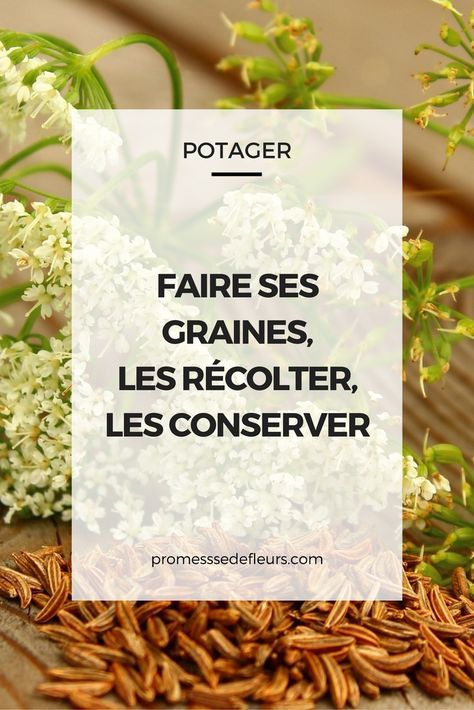 25 best ideas about potager bio on pinterest jardin permaculture jardin permaculture and for Potager bio