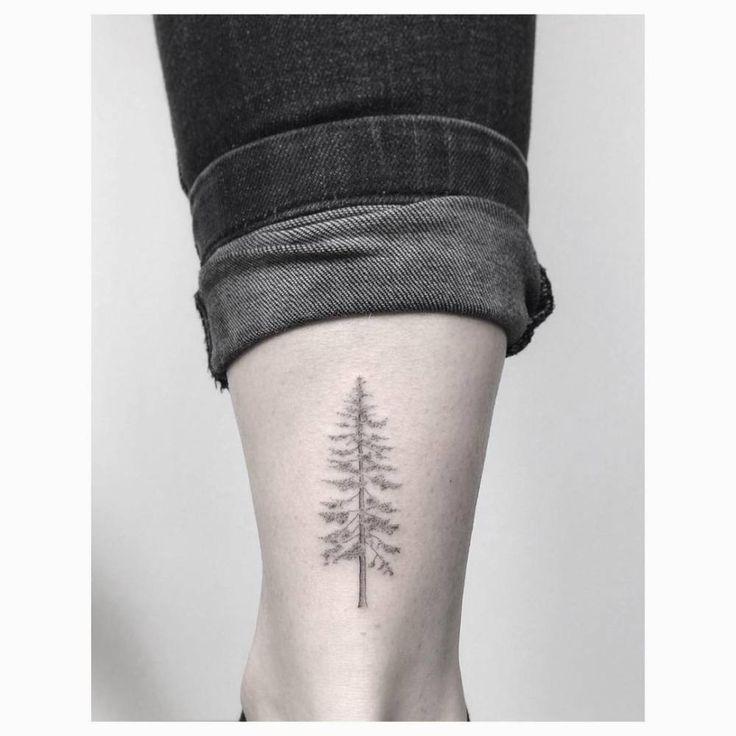 Fine line pine tree tattoo on the right Achilles heel. …
