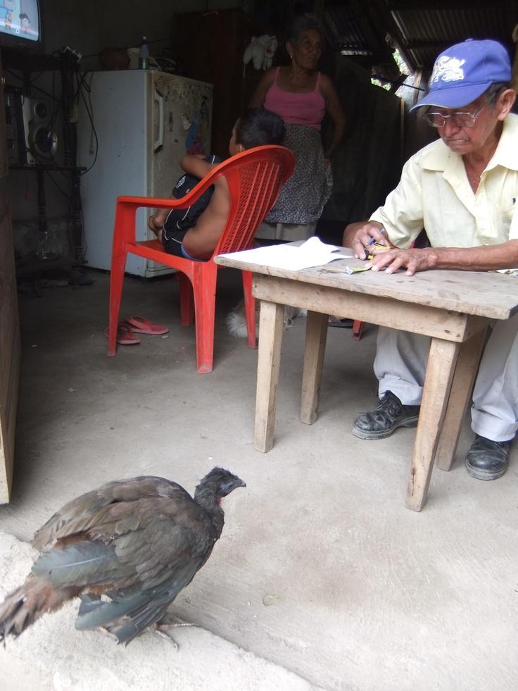 """De schoonvader van Ileana maakt voor het project een """"caja"""", een geldkistje (waarvoor dit tafeltje moet sneuvelen, want hout is erg duur). Met dit geld kunnen zij o.a. extra flyers laten drukken als ik er niet meer ben. De vrouwen gaan een coöperatie vormen; op het moment dat die is gelegaliseerd, kunnen zij een rekening openen bij de bank."""