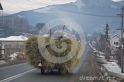 Typical hay transportation in Bucovina classical region of Romania