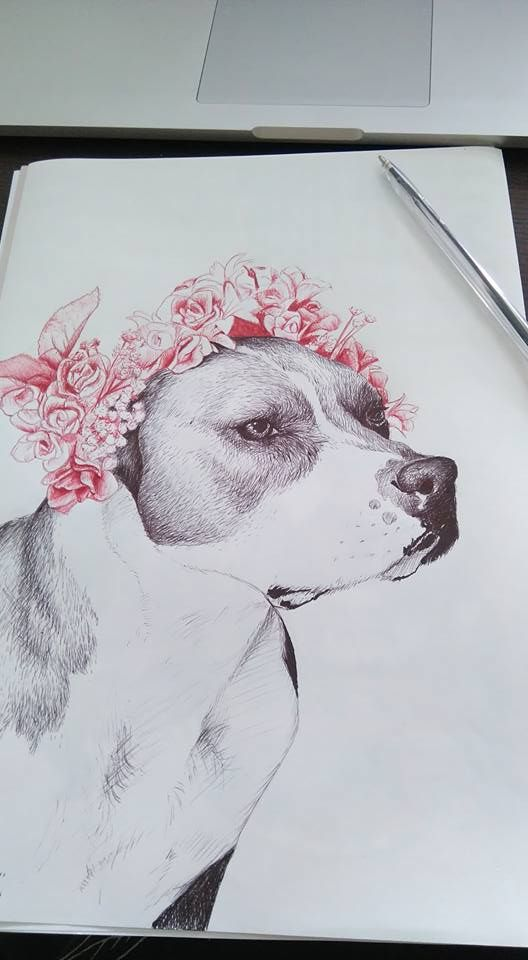 new work ball point pen drawing by Dr. Söd (original photograph by rylee-blue) #pitbull #dog #puppy #flower #drawing