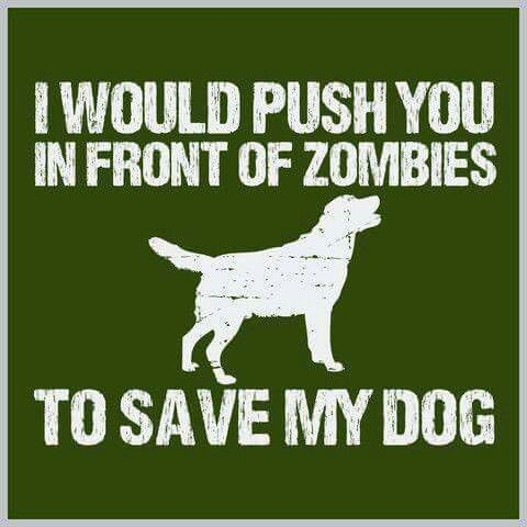 Dogs before Zombies