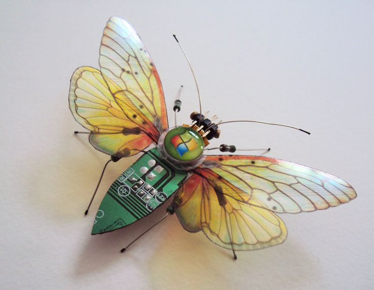 Winged Insects Made From Old Computer Circuit Boards And Electronics windows, computer, diy, recycle, circuit-board, insect, wings, bugs, art