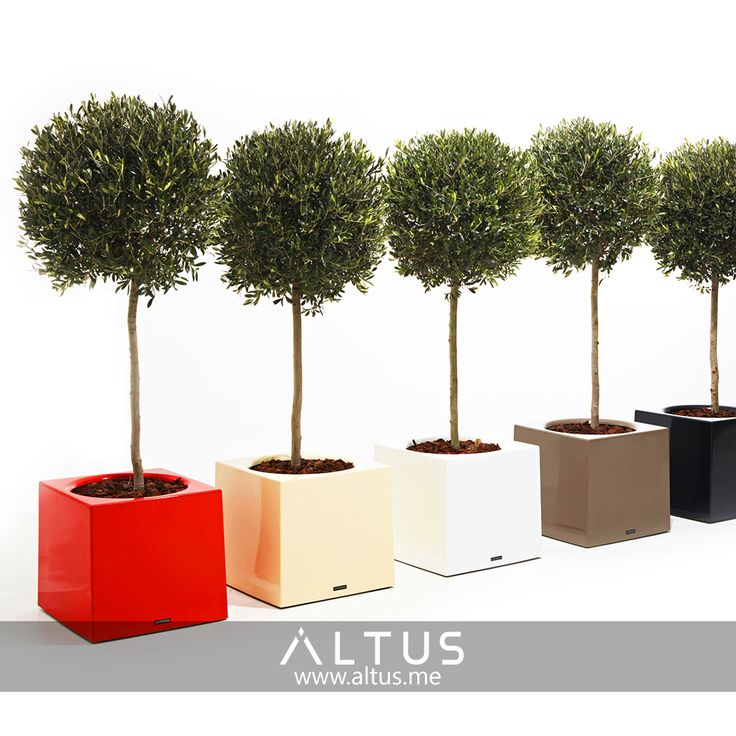 Alea flower pot with hidden rollers for easy transportation, Extremis, made in Belgium. www.Altus.me #luxury #planting #gardening #furniture #interiordesign #design #designer #garden #green #trees