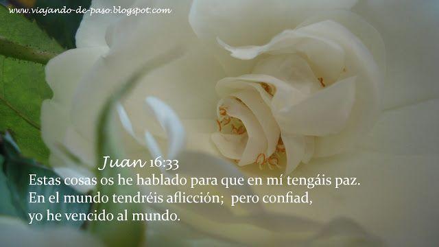 Viajando de Paso: Juan 16:33