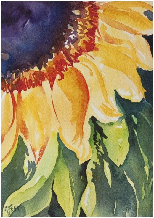 Sunflower in watercolour inspired by this online painting course by Angela Fehr