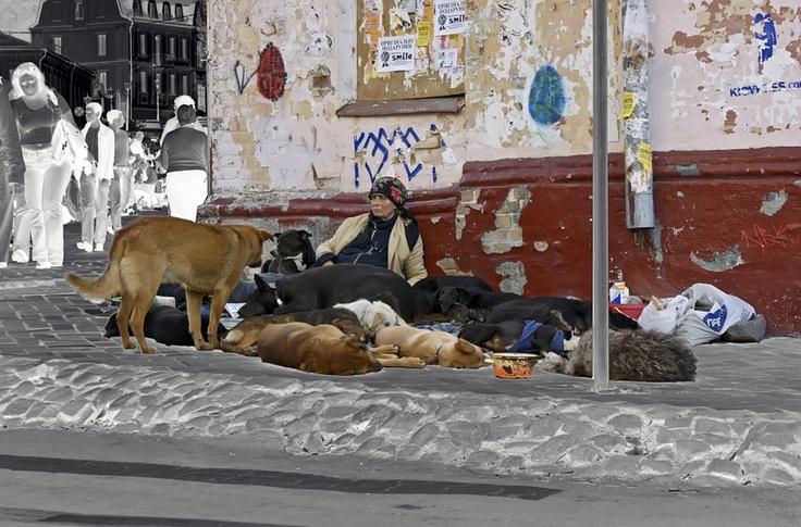 Kiev, Ukraine - HomeLess, HomeLessNess, Poverty, Pobreza ...
