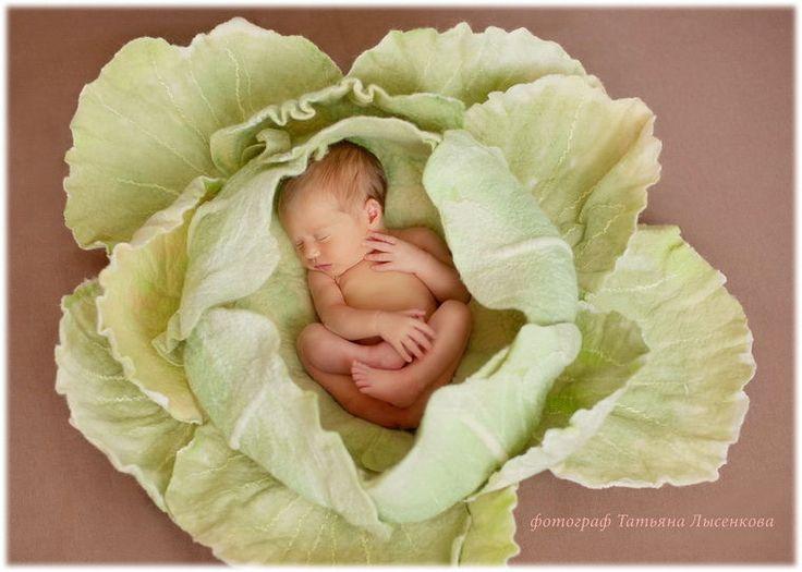 Обыкновенное чудо: капуста из войлока для фотосессии малыша - Ярмарка Мастеров - ручная работа, handmade