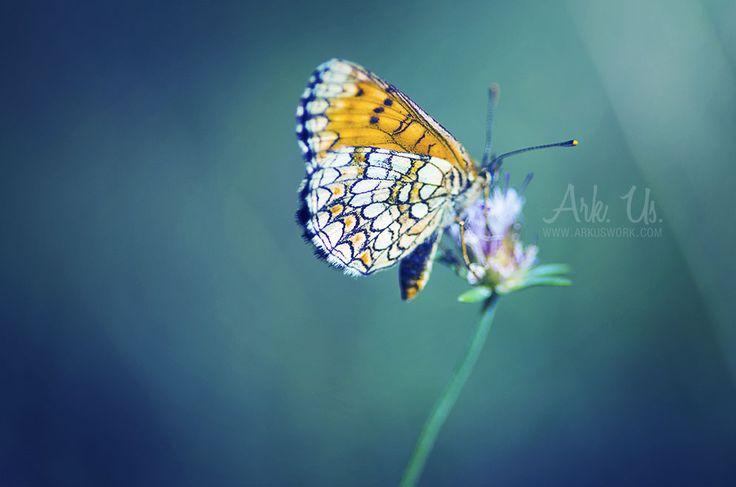 Touche coloree by Arkus83 on DeviantArt