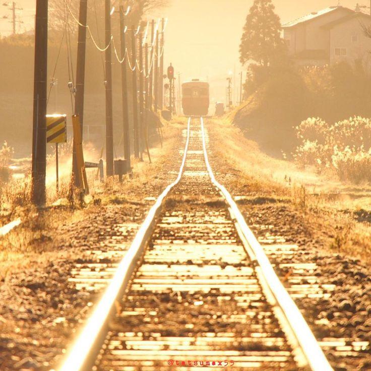 ・ この写真想い出はなんと言っても 朝陽を浴びる小湊鉄道を撮りたくて 前泊で五井駅前に宿を取り、翌朝4時半に出発し 歩いてこの撮影スポットに向かった事! 真冬の夜明け前は雪の無い千葉でも極寒(笑) 鼻水とトイレを我慢しながらひたすら 歩く歩く…。五井駅前から歩く事 約1時間、海士有木駅近くのポイントに到着。 まだ真っ暗の中、始発から何枚も撮りました。 その中でも1番のお気に入りがこれです。 ・ 真冬の日、朝陽が昇につれ輝き出す鉄路。 何気ない日常にも、感動があるんだなと 写真を撮りながら思った事を 思い出しました。 ・ 鉄道のある風景2015 総集編 1月 小湊鉄道 / 海士有木〜上総村上 市原市  千葉県
