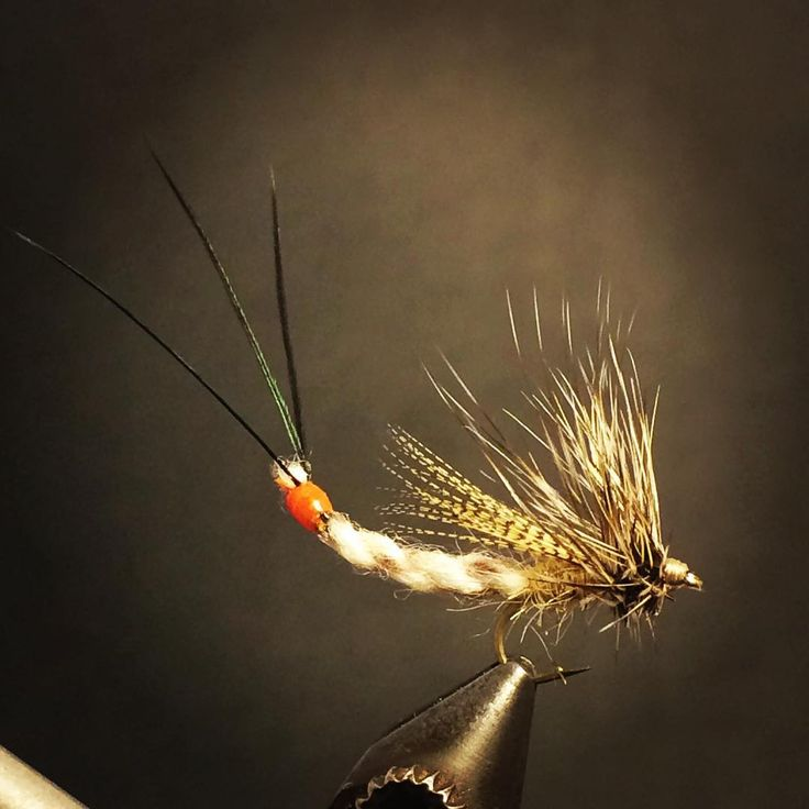 Furled Yarn Clipped Hackle Green Drake Spinner #flytying #flytyingtable #flytyingjunkie #flytyingnation #flyfishing #flyfishingjunkie #trout #troutfishing #dryfly #dryordie #renzetti #orvis #matchthehatch #greendrake #mayfly #fishing #browntrout #browntown #delawareriver #westbranchdelaware #pennsylvania #zeusoftrout #theflylab