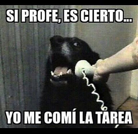 http://compartirvideos.es Yes professor, it's true. I ate the homework. Yo lo…