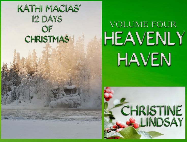 Free excerpt from Heavenly Haven, what readers are saying would make a great Christmas movie.   http://www.christinelindsay.org/2013/10/excerpt-from-heavenly-haven.html