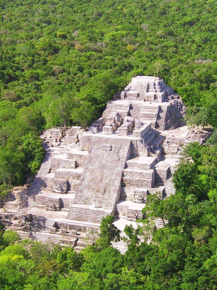 Calakmul, Campeche, Yucatan Peninsula, Mexico, within a tropical forest, once the center of a major and the largest Mayan city