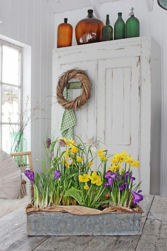 Pi di 25 fantastiche idee su colori della casa di for Caratteristiche di design della casa