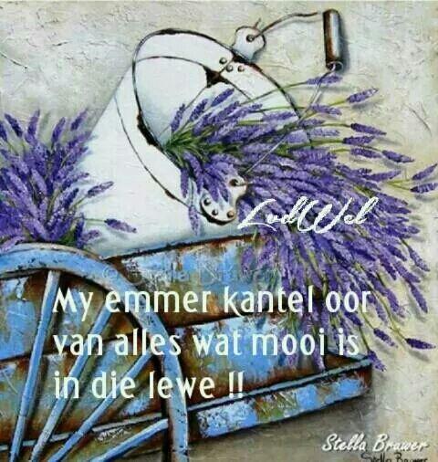 """""""Let wel: My emmer kantel oor van Als wat mooi is in die lewe"""" deur Stella Brawer #Afrikaans"""