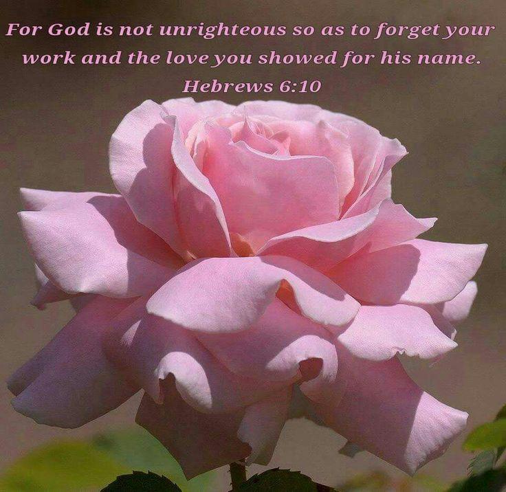 ~Hebrews 6:10~