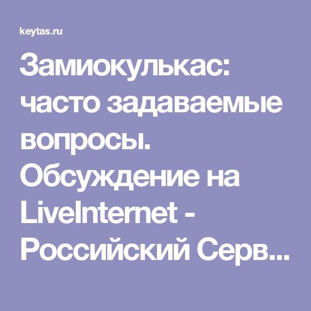 Замиокулькас: часто задаваемые вопросы. Обсуждение на LiveInternet - Российский Сервис Онлайн-Дневников