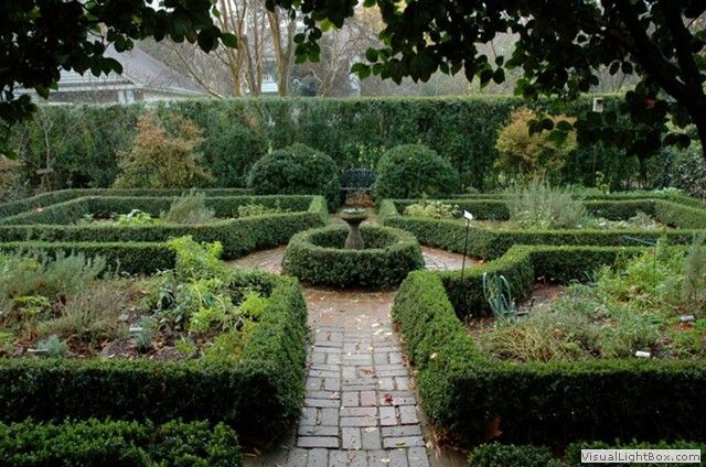 11 best sanctuary images on pinterest charlotte nc - Wing haven gardens and bird sanctuary ...