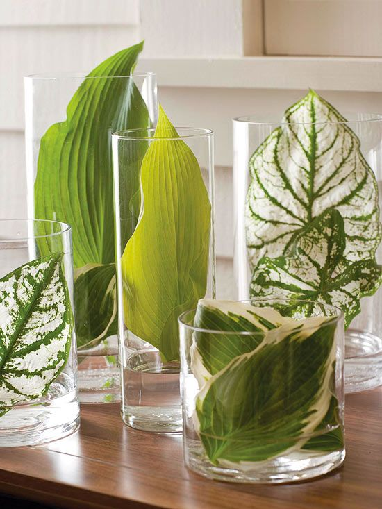 For your next centerpiece or tabletop display, try this: Gather an assortment of cylindrical vases in various sizes, along with large leaves in a variety of textures and color striations. Put a bit of water in the vases and tuck the leaves inside for a natural display with a modern twist.