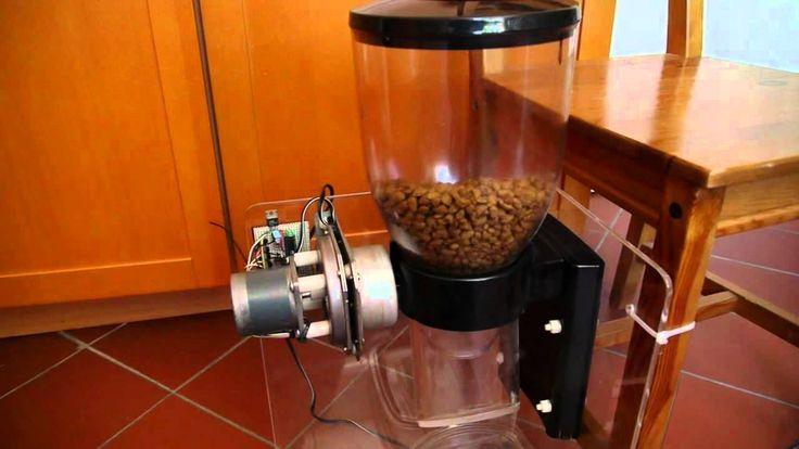 auto cat feeder