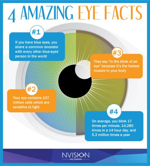4 amazing eye facts from NVISION Eye Centers.