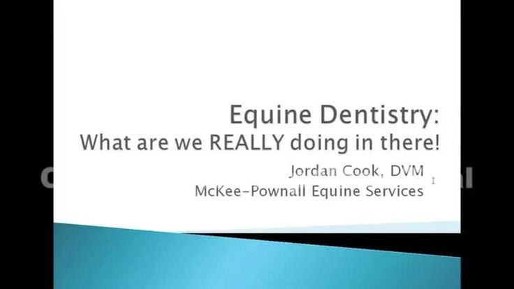 In this recorded webinar, Dr. Jordan Cook talks about the importance of dental care for your equine companion as well as certain issues that can arise.