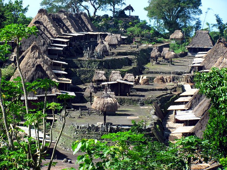 A tribal village in Flores, Indonesia.