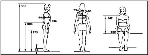 4.2. La proporción en la figura humana. |