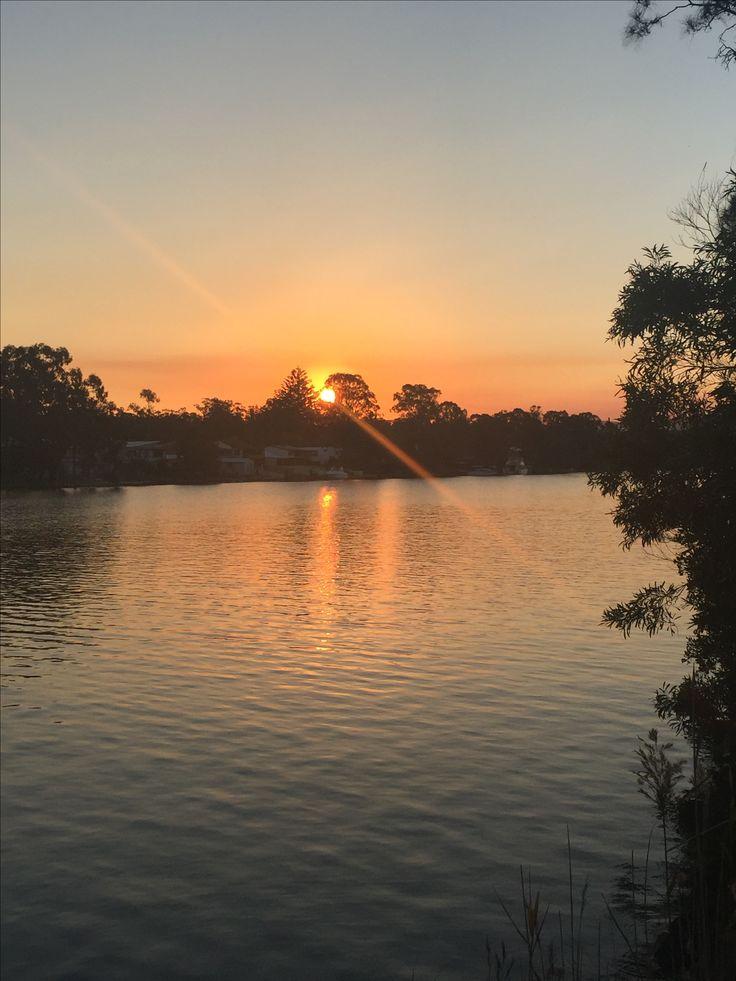 My front yard, Dora Creek-Lake Macquarie
