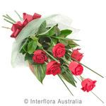 Affection - Bouquet of 6 Long Stemmed Roses