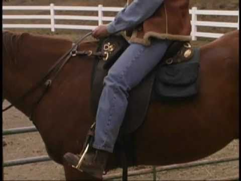 How an Australian saddle should fit you and your horse (video)