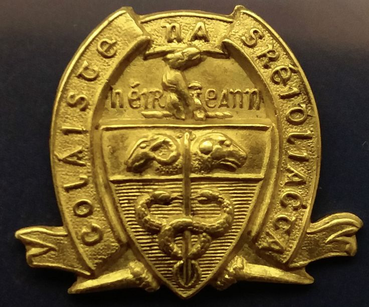 Irish Army Veterinary College brass OTC collar badge 1929-1934 issue | eBay