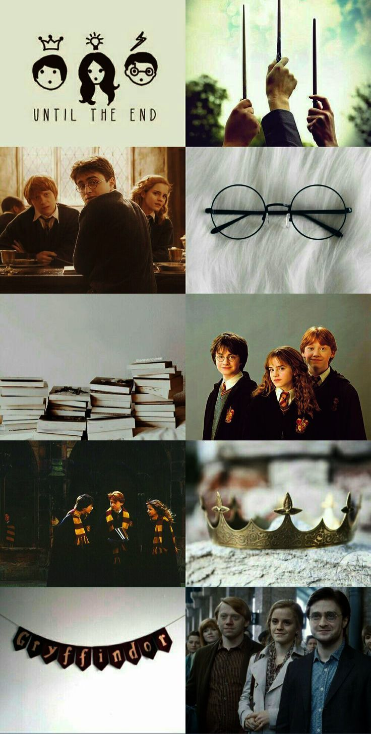 Harry Potter Memes Professor along with Harry Potter World Paris following Harry…