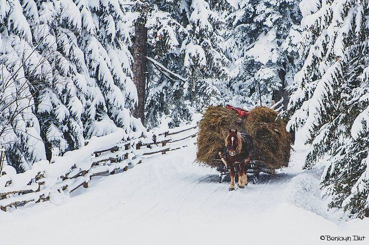 Winter in Romania #traditions #mountains #villages