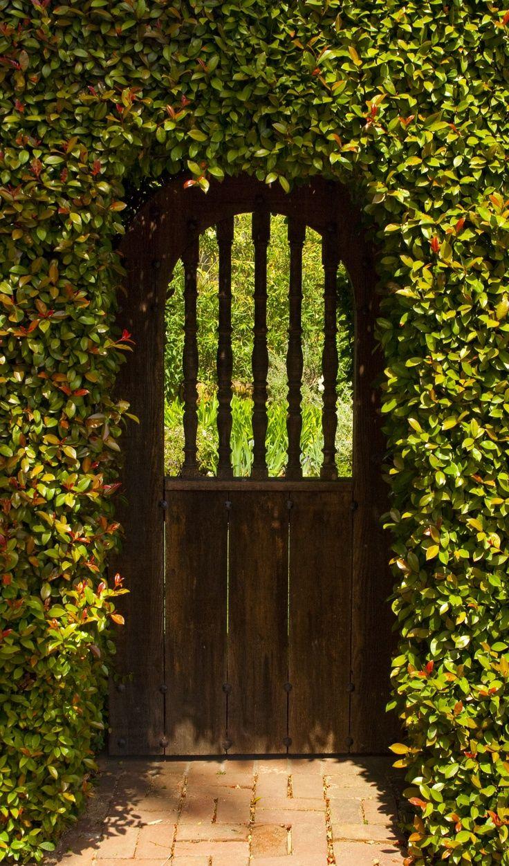 Secret Garden: Thru The Garden Gate