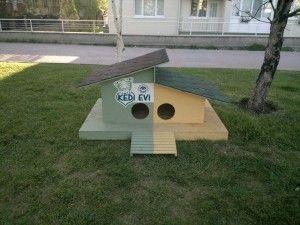 ahşap kedi kulübesi
