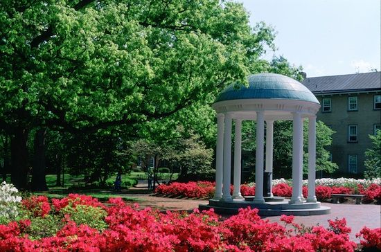 """""""Without you even noticing, UNC seeps into your pores, she's in your blood. You can't remember a time when you didn't have moments on campus where you lose your breath for a second and all you can think is, 'Wow, I love this place.'"""" Daily Tar Heel"""