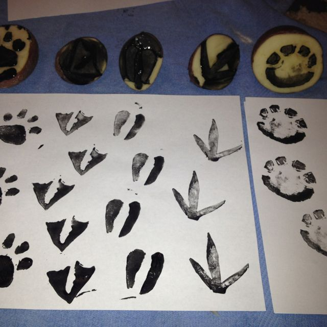 Animal track print stamps, carved out of potatoes