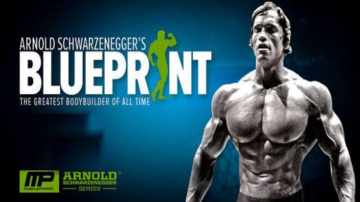 Arnold Schwarzenegger Blueprint [Bodybuilding Motivation]