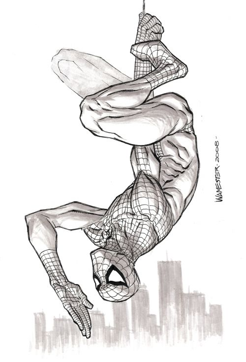 24 Best Images About Spider-Man Drawings On Pinterest | Rapunzel Models And Spiderman