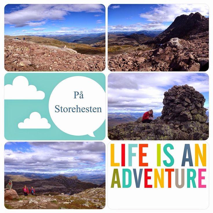 Project Life Norge: Om den nye Project Life appen