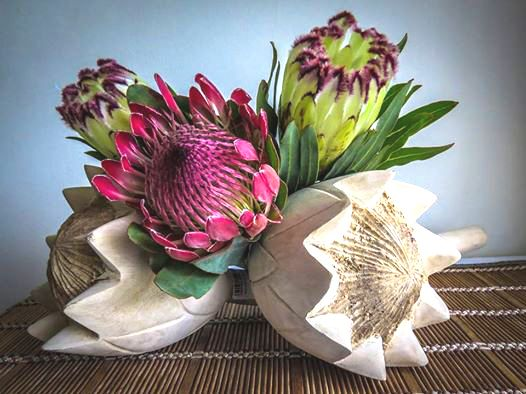 I love these wooden proteas from Home-Store, George, paired with the real thing