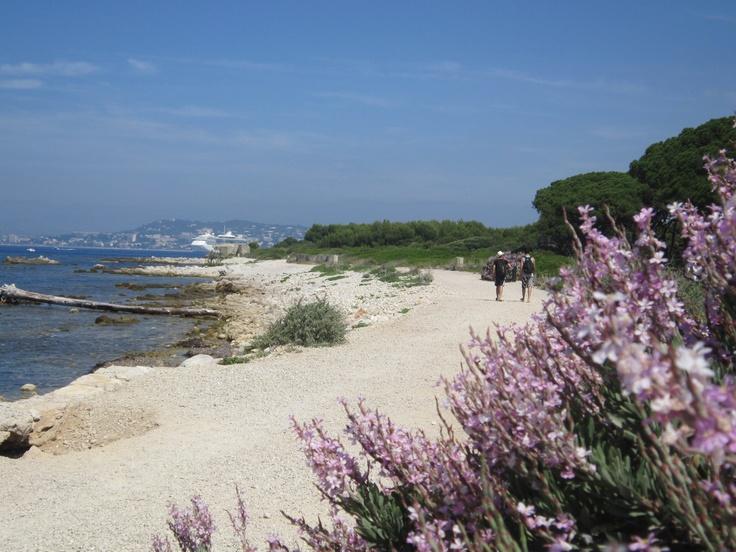 illa Margarida, davant de Cannes