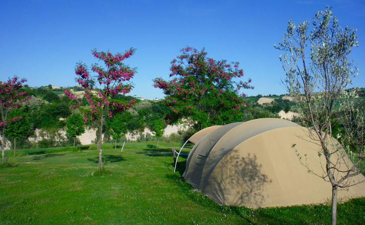Rent a Tent at Agricamp Picobello
