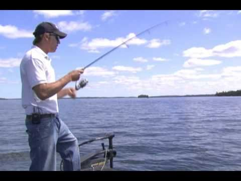 100 best images about walleye on pinterest lakes pike for Walleye fishing tips