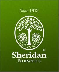 Founded in 1913, their team is dedicated to providing quality vegetative products and design services.  http://www.sheridannurseries.com/