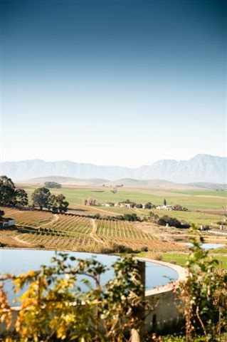 Get away from the city and enjoy space and fresh air. Badenhorst Farm is perfect for the whole family.. http://www.perfecthideaways.co.za/mountain-accommodation/swartland/badenhorst-farm-cottage #farms #capetown #accommodation